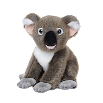Aurora Natural History Museum Favourites - Koala de peluche (30,4 cm)