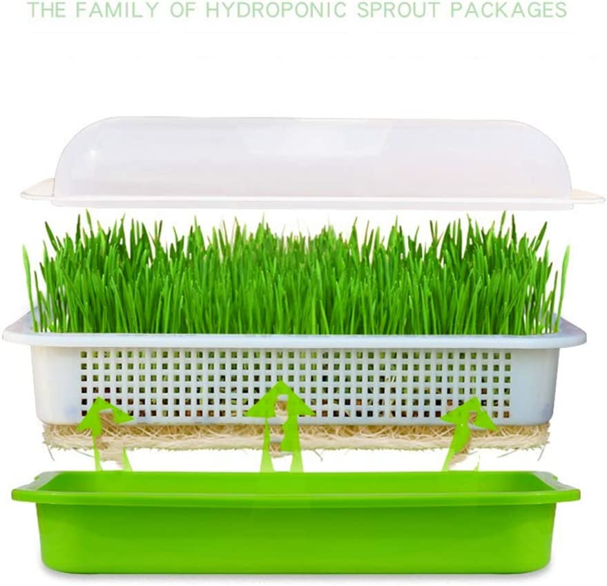 Great For Home Garden Office 6 Pack Ymeibe Seed Sprouter Tray Seed Germination Tray With Drain Holes For Soil Free Planting Seedlings Gardening Kolenik Indoor Gardening Hydroponics