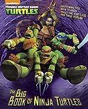 The Big Book of Ninja Turtles (Teenage Mutant Ninja Turtles) (Big Golden Book)