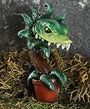 Miniature Fairy Garden ''Man Eating Plant Fang''