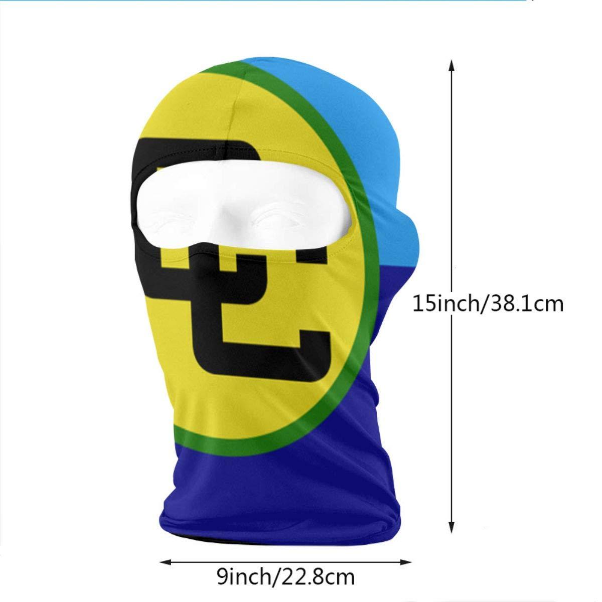 Wind-Resistant Face Mask LaoJi Caribbean Community Flag Winter Ski Mask Balaclava Hood