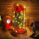 """""""Beauty and the Beast"""" Red Rose / Pink Rose Enchanted Red Silk Rose and LED Light with Fallen Petals in Glass Dome on a Wooden Base Gift for Valentine's Day Wedding Anniversary Mother's Day Gifts"""
