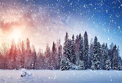 Sfondi Paesaggi Natalizi.Yongfoto 1 5x1m Vinile Fondali Fotografici Paesaggio Invernale Innevato Abeti Innevati Natura Natale Sfondi Foto Partito Studio Fotografico Puntelli Amazon It Elettronica