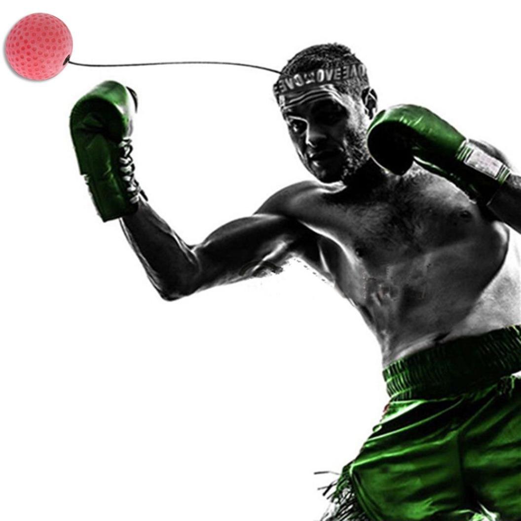 人気デザイナー Callm B076MQPPSX FightボールReflex Boxing Punching Punching Ball WithヘッドバンドMMAボクシングボールCombatスポーツリアクションボールパンチ練習トレーニング Callm A B076MQPPSX, アニモスタイル(DOG&CAT):760c10c4 --- a0267596.xsph.ru