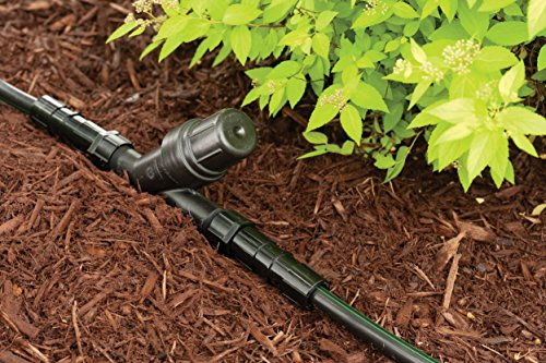 Rain Bird Rby100s Drip Irrigation In Line Y Filter 1 Quot X 1