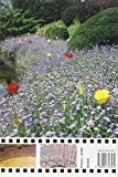 Image de Botanica per giardinieri