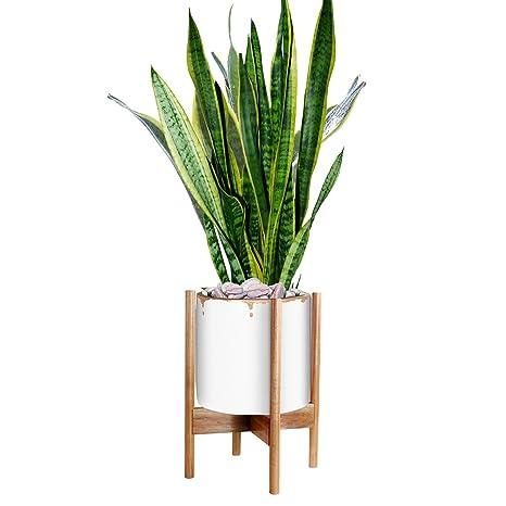 Amazoncom Glosom Indoor Plant Stand Width 11 White Pot Not