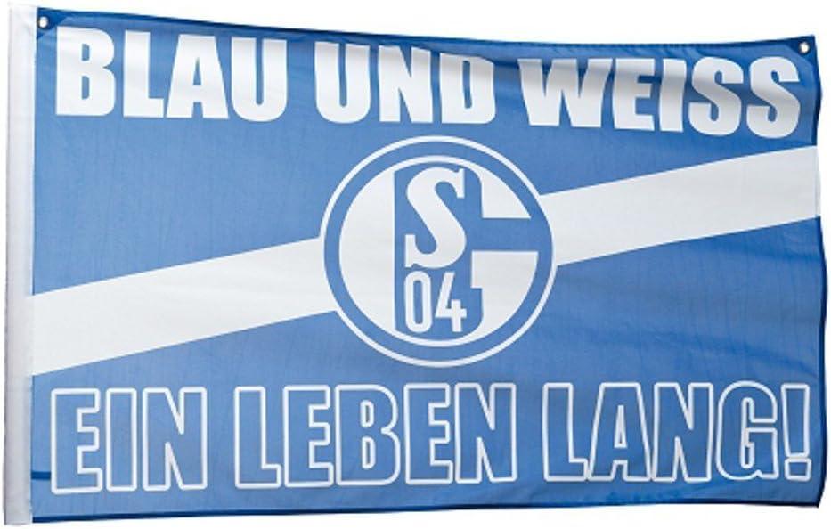 2 /Ösen FC Schalke 04 Hissfahne// Hissflagge Erfolge 90x60 cm Fahne