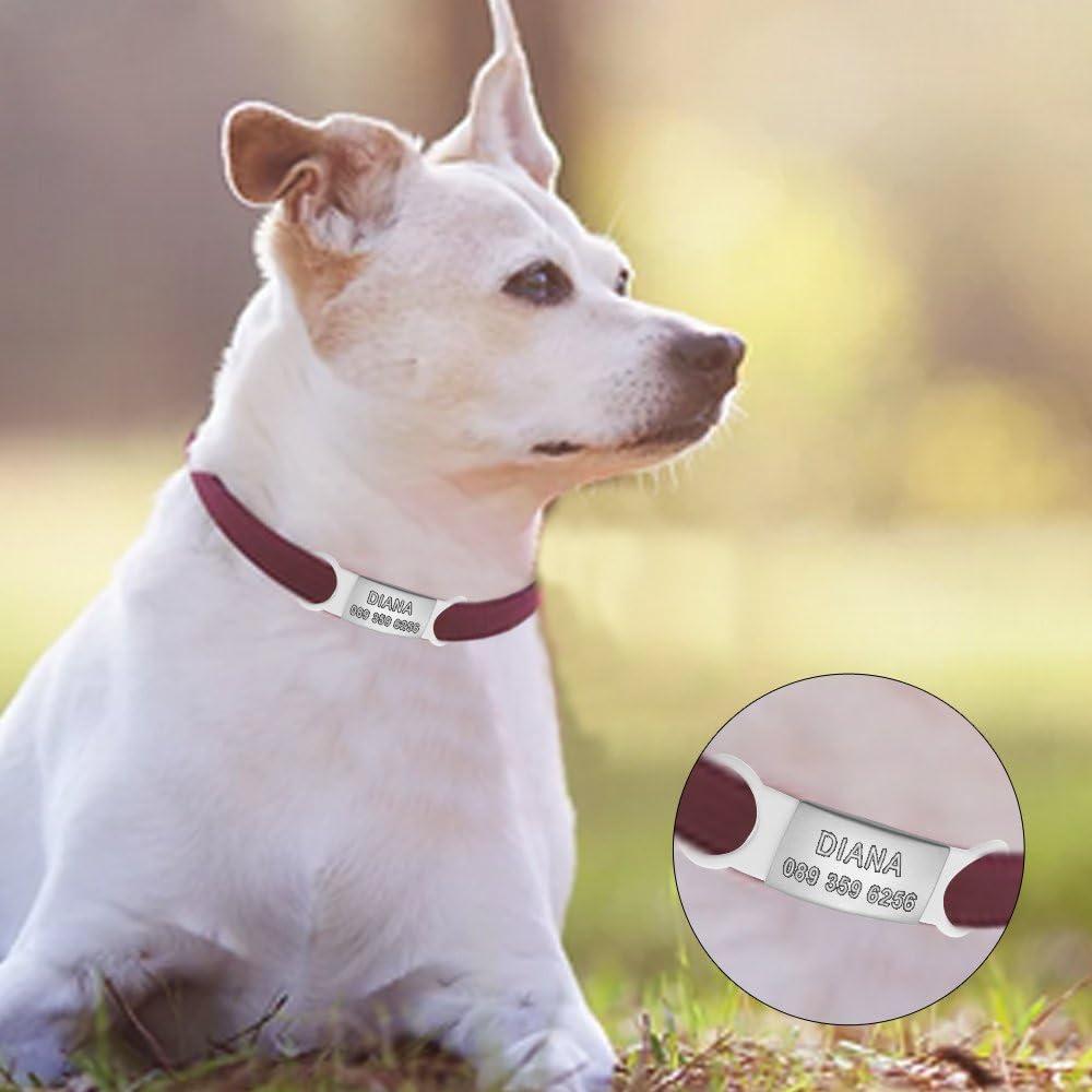 aplusashop ID Dog Tag Hundemarke Edelstahl Gravur nach Wunsch /& Silikonring f/ür Halsband