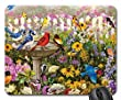 Songbirds at the Birdbath F1 Mouse Pad, Mousepad (Birds Mouse Pad)