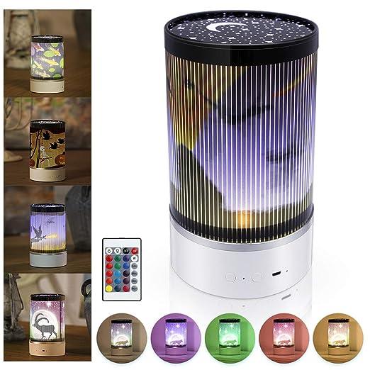 EXTSUD Lámpara de Proyector Luz Proyector Infantil con 4 Películas y Control Remoto Luz de Mano Recargable Luz de Noche para Niños, Buen Regalo para ...