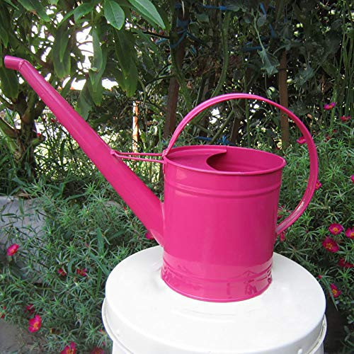 Asvert Long Spout Watering Can Pot Rustic Retro Textured Gardening Tools 1.3L/43oz (Rose red) (Can Watering Long Spout Metal)