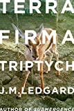 Terra Firma Triptych: When Robots Fly (Kindle Single)