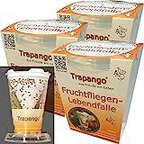3x Fruchtfliegen-Lebendfalle Trapango®, (3er-Pack