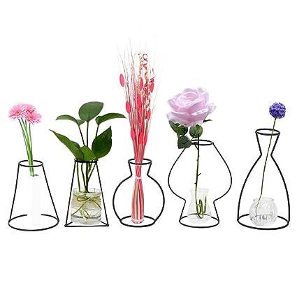 Amazon Zjchao Metal Vase Frame 5 Pcs Creative Shapes Black