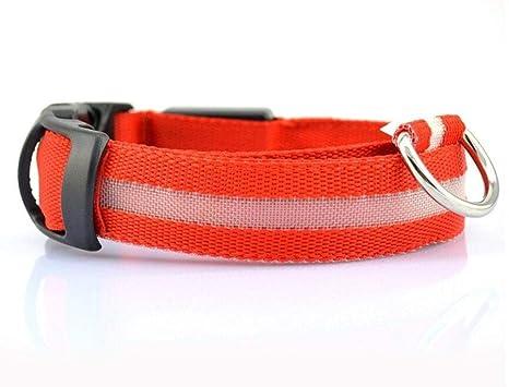 Collar de perro LED de nylon para mascotas, correa de perro que ...