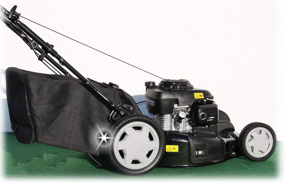 Cortacésped de gasolina con cesta CGV160, de Honda, 53 cm ...