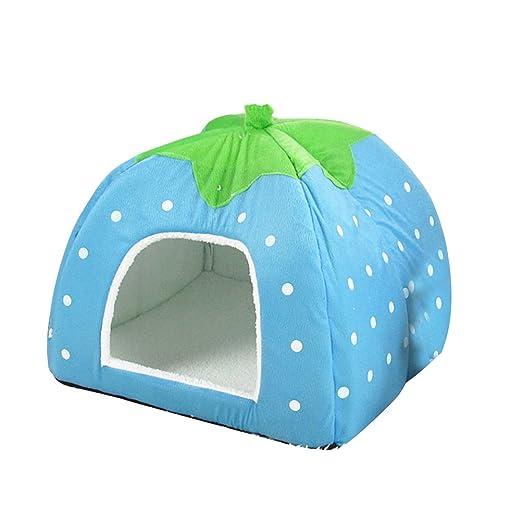 ueetek Igloo Caseta gato perro cojín cama para perro suave peluche algodón cálido fresa azul ácido 31 x 31 x 33 cm: Amazon.es: Productos para mascotas