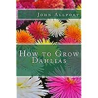Image for How to Grow Dahlias