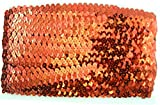 Stretch Sequin Roll - Available in 18 Colors - 2
