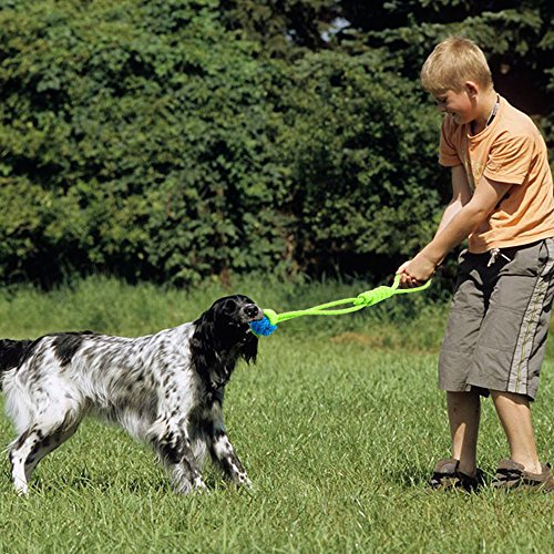 high-quality Didog 5 Packs Sturdy Dog Tug Rope Toy for Puppy Small Medium Dogs Biting Chewing and Playing