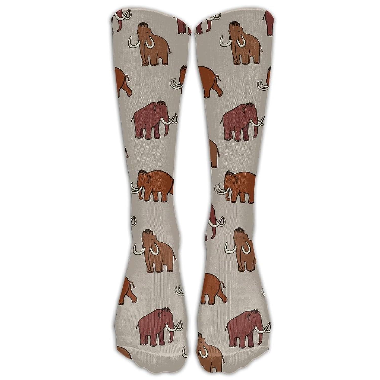 Amazon.com: JJZ-sock Mens&Womens Premium Quality Mammoth Era Ice Age ...
