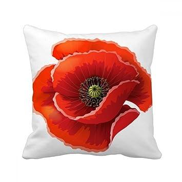 Amazon.com: Flores rojas Pintura Big maíz Poppy inserto ...
