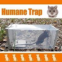 Trampa de Ratón, 2win2buy Caja Detección Reutilizable Transparente ...