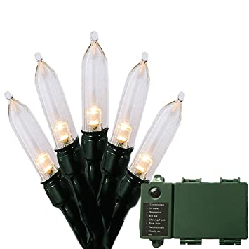 Battery Operated String Lights with Timer & Indicator - Christmas Lights  Outdoor String Lights 100 LED - Amazon.com : Battery Operated String Lights With Timer & Indicator