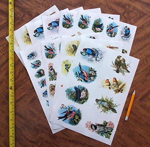 Decoupage Paper Pack 10sheets A4 8 Quot X12 Quot Beautiful