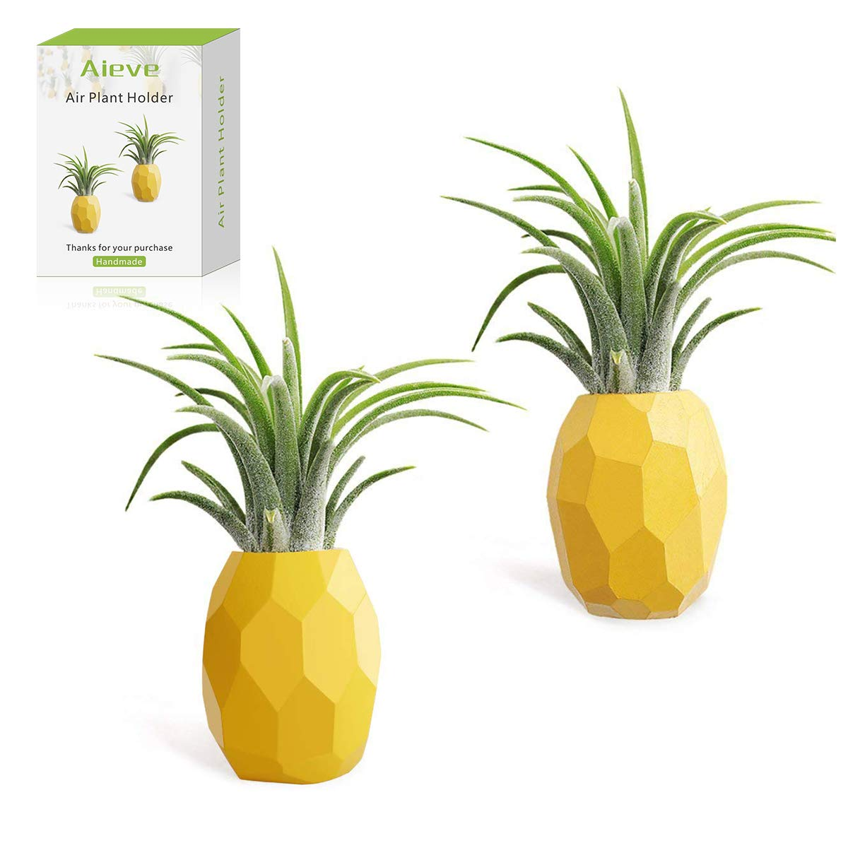 AIEVE Air Plant Holder,2 Pack Air Plant Pineapple Planter Tillandsia Holder Hanger Geometric Air Plant Holder Container Pot Display with Magnet for Hanging Air Plants Indoor Wall Home Decor