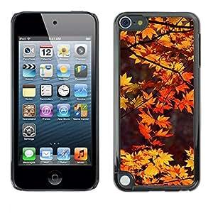"Pulsar Snap-on Series Teléfono Carcasa Funda Case Caso para Apple iPod Touch 5 , Brown deja Red Tree Naturaleza Otoño"""