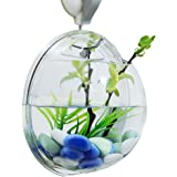 ROVATE Wall Hanging Aquarium, Arylic Wall Décor Fish Bowls with Fake Plants + Rock Decoration + Fish Net