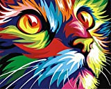 Paint By Numbers Kits For Adult Kids,Rainbow Color Cat Face DIY Painting By Number For Home Wall Decor,16''x20'' Unmounted