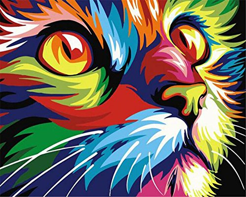 Paint By Numbers Kits For Adult Kids,Rainbow Color Cat Face DIY Painting By Number For Home Wall Decor,16