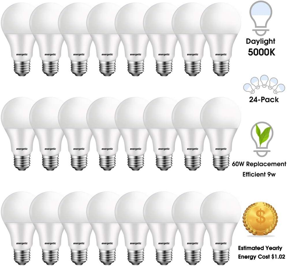 24 Pack A19 Led Light Bulbs 60 Watt Equivalent, 5000K Daylight, E26 Base 750lm Non-Dimmable UL Listed