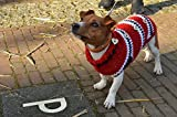 Canvas Print Jack Russell Sweater Hooks Cold Jacket Pet Dog Stretched Canvas 32 x 24