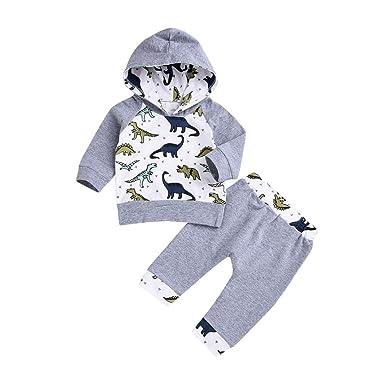 8e17927ea1f Amazon.com  DIGOOD Toddler Baby Girls Boys Dinosaur Hoodie Tops and Pants