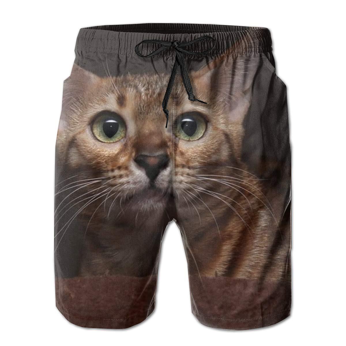 Male Beachwear Swimtrunks Cat Drawstring Elastic Waist Running Beach Summer Outfit Pants