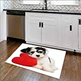Bathroom Rug Carpet a lover valentine havanese puppy dog with a red heart isolated Anti Bacterial,Late x W35'' x H23''