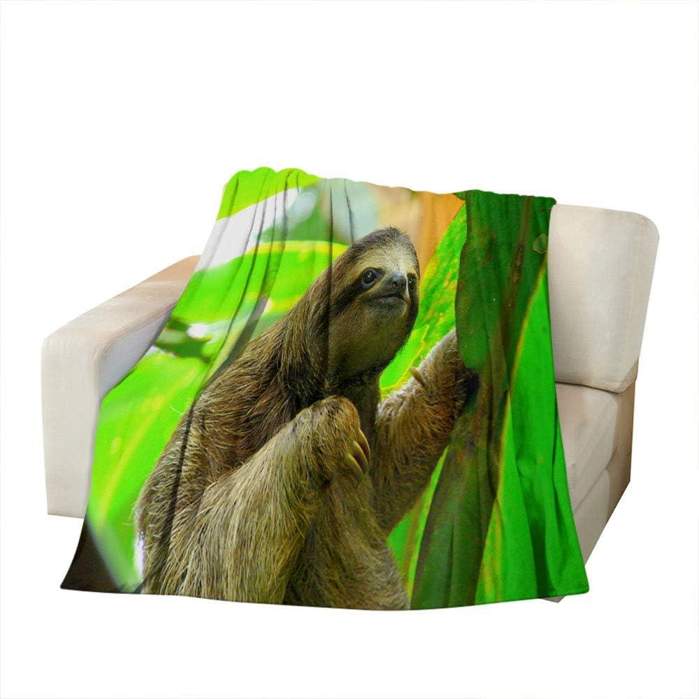 Moslion Crocodile Soft Throw Blanket 30x40 Inch Wildlife Animal Crocodile Wide Mouth Eyes Blanket Flannel Warm Travel Blankets for Pet Dog Cat