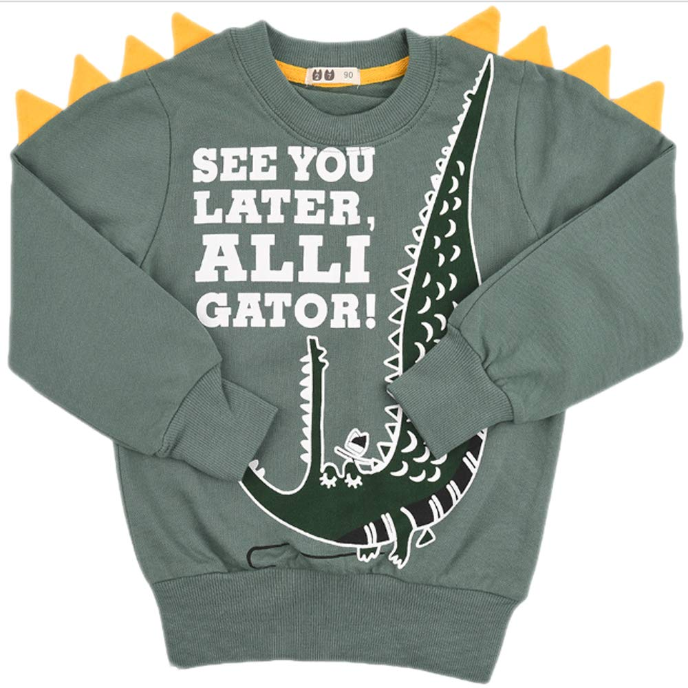 XRDSS Boy Cartoon Dinosaur Long Sleeve Pullover Cool Casual Long Sleeve