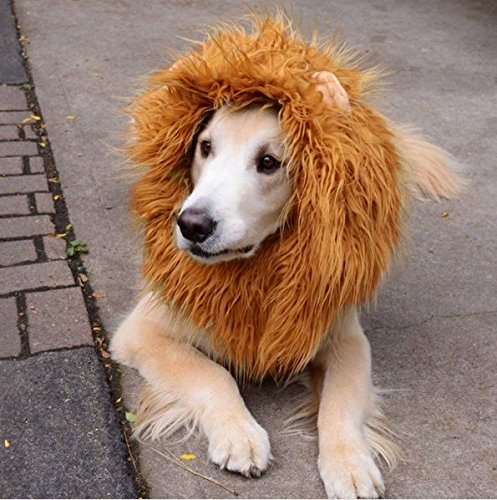 HTKJ Dog Lion Mane Costume Cute Adjustable Washable Pet Wig Hat for Dog Clothes Dress up Halloween Christmas Easter Festival Party Activity (Dog-Brown with ear) by HTKJ (Image #1)