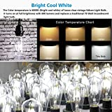 LED-Vintage-Edison-Light-Bulbs-6w-Dimmable-Retro-Decorative-Farmhouse-Light-Bulb-Clear-ST64-Antique-E26-Squirrel-Cage-Filament-Light-Bright-Cool-White-6000K-for-Sconces-Wall-Pendant-Lighting-Pack-of-6