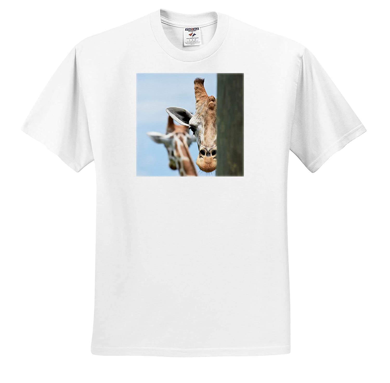 T-Shirts Giraffe Peering Out Behind Post 3dRose Susans Zoo Crew Animal