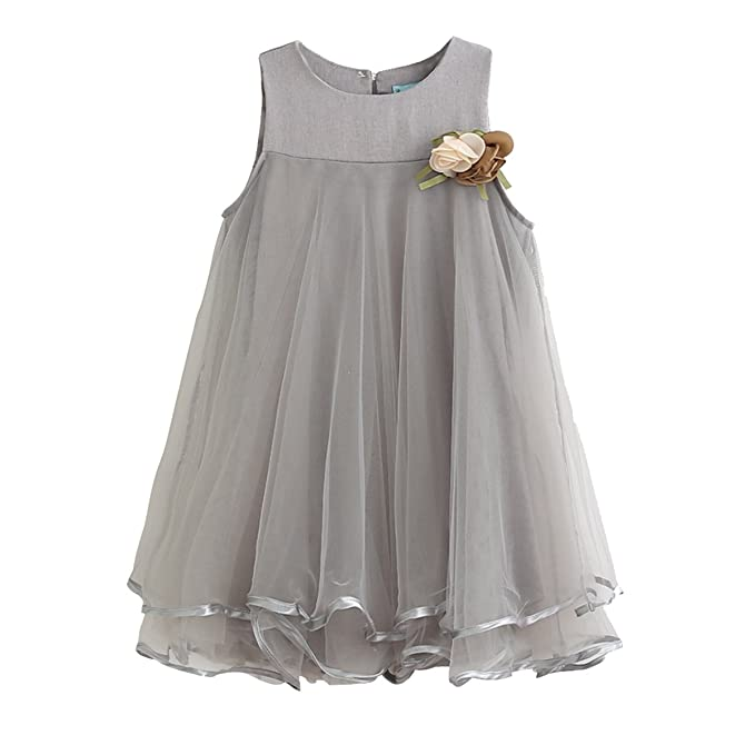 2d3e496fe9 Image Unavailable. Image not available for. Color  1-6T Kid Baby Girl  Flower Girls Tulle Lace Dress ...