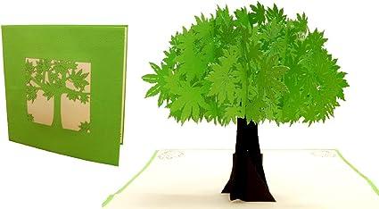 Lin N718 17607 Carte Pop Up En Forme D Arbre Nature Pop Up Pour Anniversaire Cartes De Vœux Bonne Retablissement Cartes D Anniversaire Cartes De Fete Des Meres Arbre Amazon Fr Fournitures De Bureau