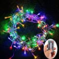 Echosari? 100 Leds Outdoor LED Fairy String Lights Battery Operated with Remote (Dimmable, Timer, 8 Modes) Waterproof Ip65 -