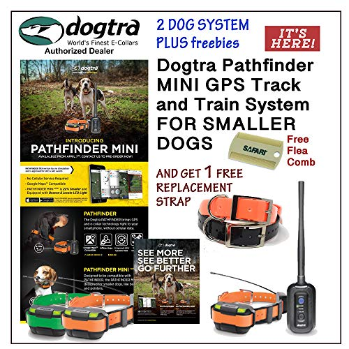 Dogtra 2 Dog Pathfinder Mini GPS Track and Train System for Smaller Breed Dogs GET 1 Free Replacement Strap and Flea Comb (Green)
