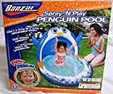 Best Banzai Kiddie Pools - Banzai Spray 'N Play Penguin Pool by Banzai Review